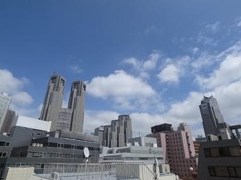 ライオンズマンション西新宿第八