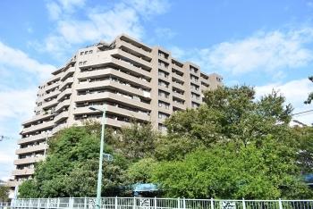 ナイスパークステイツ東陽町仙台堀川公園