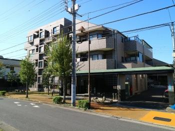ライオンズマンション葛飾鎌倉
