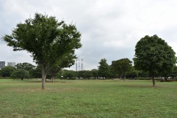 ライオンズヴィアーレ木場公園