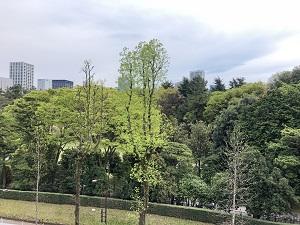 ガーデンヒルズ四ツ谷迎賓の森