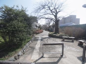 THEパームス東武練馬